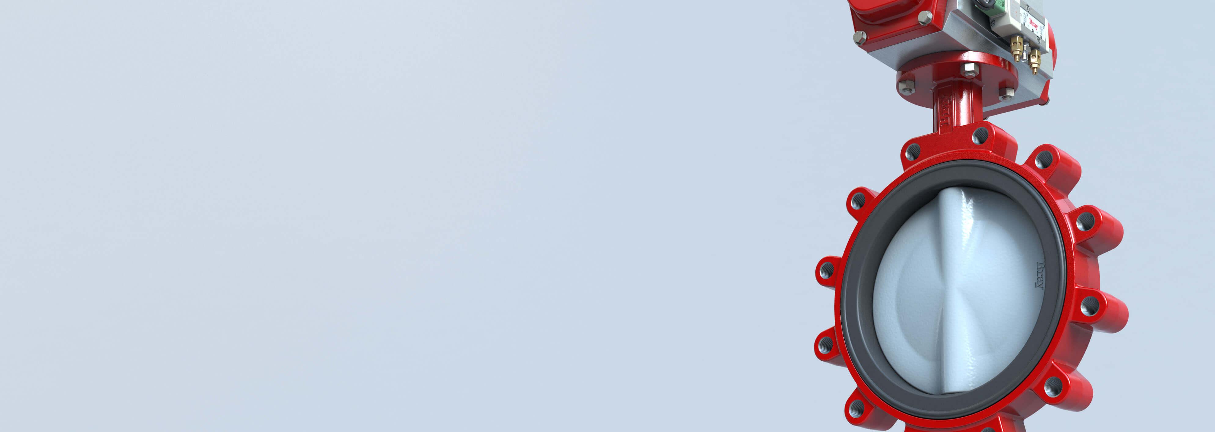 Vanne papillon à siège élastomère Séries 30-31Bray International