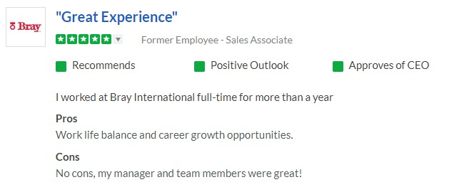 "A review of working at Bray International on Glassdoor.com that says ""Great experience"""
